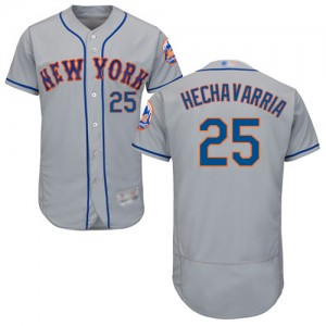 Authentic Men's Adeiny Hechavarria Grey Road Jersey - #25 Baseball New York Mets Flex Base