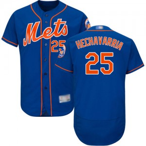 Authentic Men's Adeiny Hechavarria Royal Blue Alternate Jersey - #25 Baseball New York Mets Flex Base