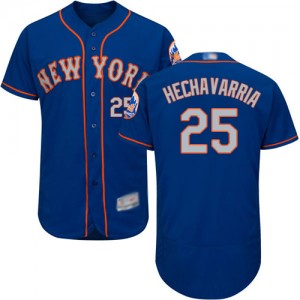 Authentic Men's Adeiny Hechavarria Royal/Gray Alternate Jersey - #25 Baseball New York Mets Flex Base